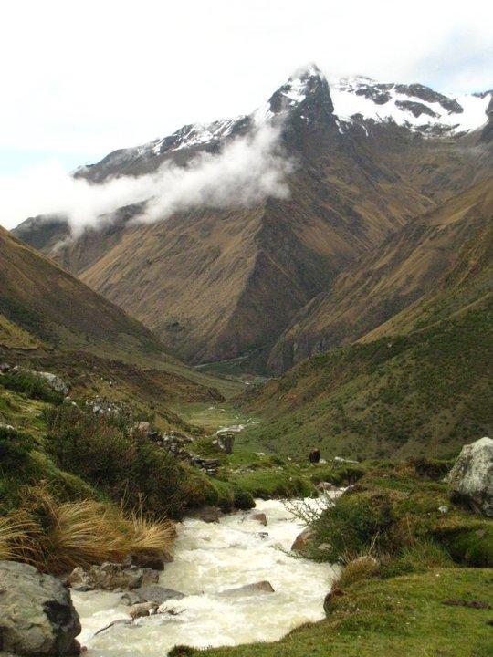 salk scenery