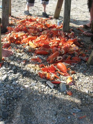 remains of a lobster feast