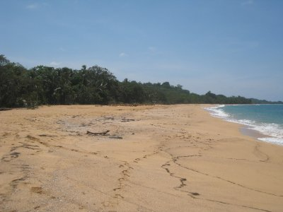 Bluff beach with Survivor set
