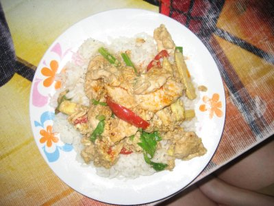 Yellow Curry Chicken with Rice