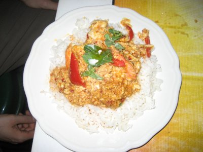 Red Curry Shrimp with Rice