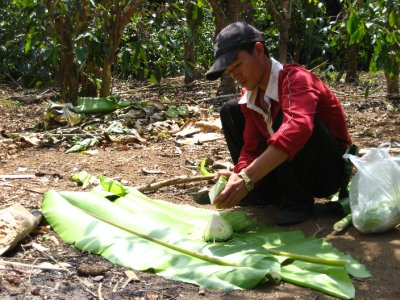 Cutting up the Cabbage on a Banana Leaf