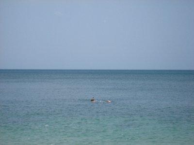 Pat Snorkling at Ko Lanta Beach