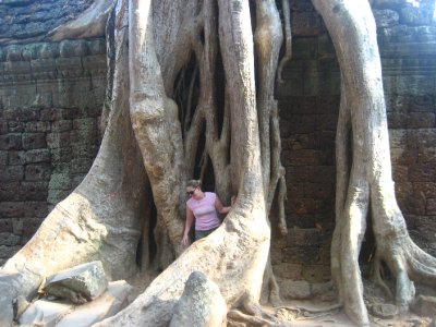 Clara in the tree roots at Ta Prohm