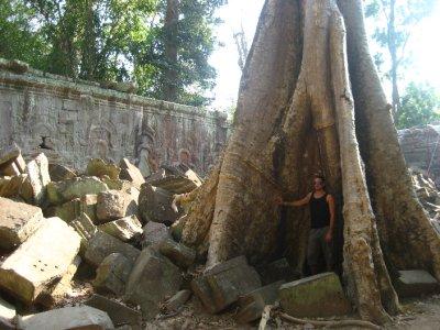 Ken inside a tree at Ta Prohm
