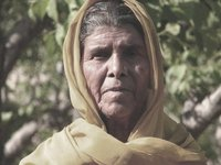 old woman, tattapani, indian himalaya