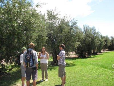 Enjoying the olive farm tour