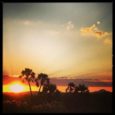 Namibia_Palmwag_sunset.jpg