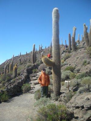 Big cactus..... Fish Island- middle of the largest and highest salt lake in the world- Salar de Uyuni