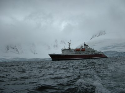 Cold Seas- MS Expedition