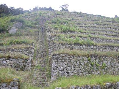 Terraces- Incan farming land