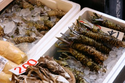 shrimpies