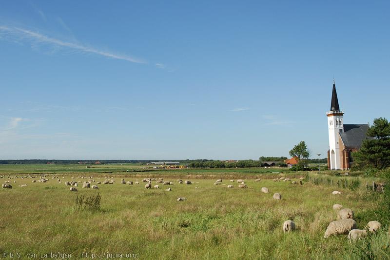Texel landscape