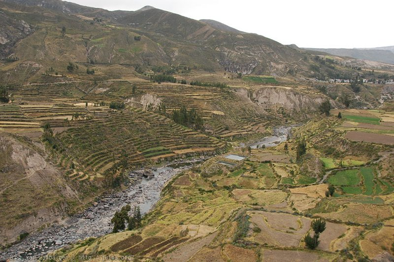 Pre-Inca terraces in the Colca Valley