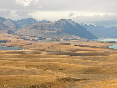 Landscape between Lake Tekapo and Lake Alexandrina