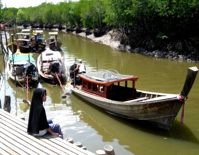 Catching a boat to mangroves