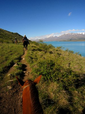 Horseback riding around Lake Tekapo