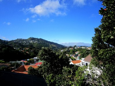 View of Wellington