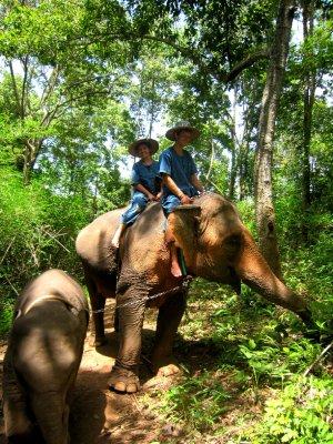 Baan Chang elephant sanctuary