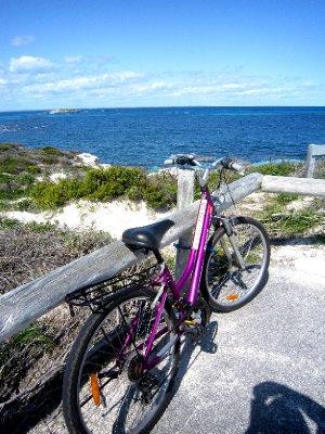 My pink mountain bike, loved it!