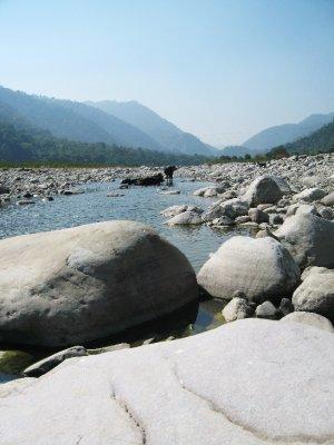 River Kosi at Betalghat Village