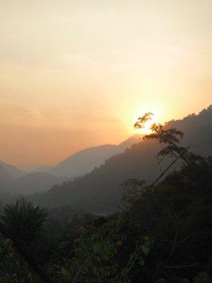 Sunset Chai