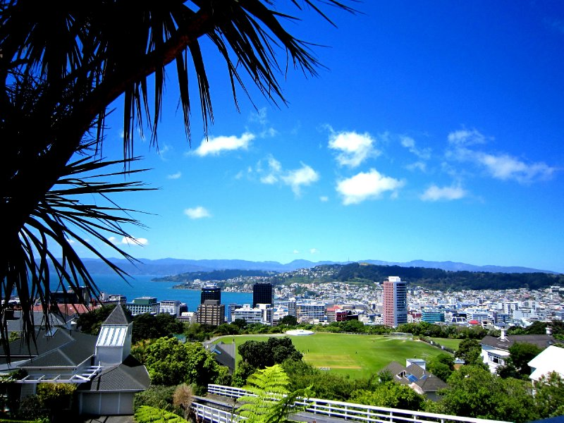 View over Wellington from Botanic gardens