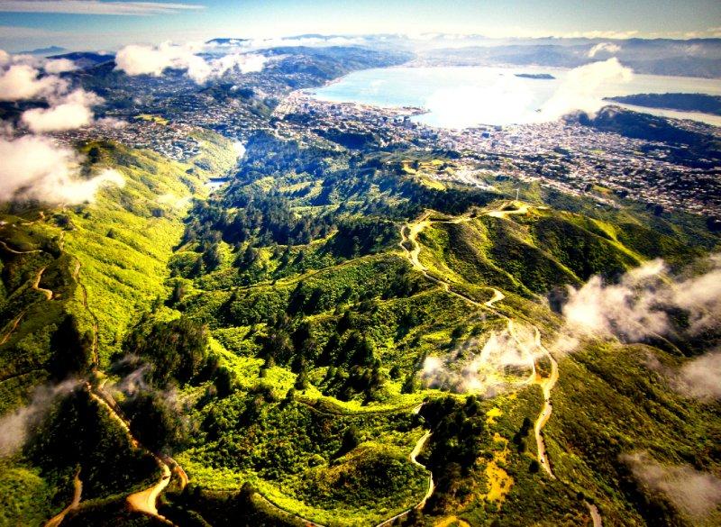 Zealandia valley