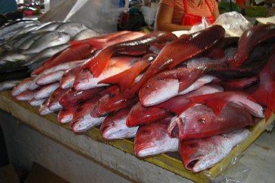 Fish at the Mercado