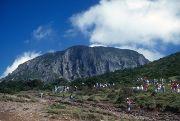 Mt Halla