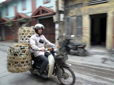 vietnamese..scooter.jpg