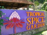 Tropical_spice_garden.jpg