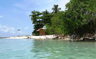 turtle_island.jpg