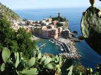 Signed Cactus overlooking Vernazza.
