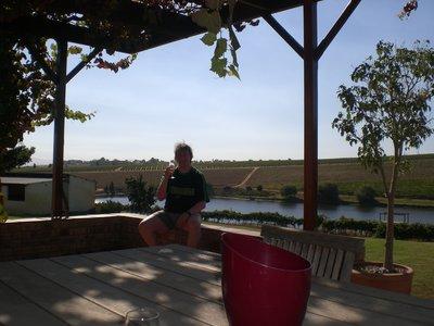 A Wine Farm
