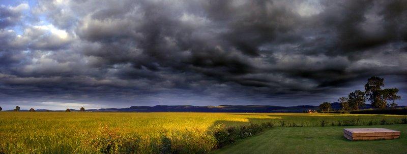 Barley fields, Powgavie