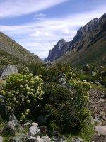 Huaraz_078.jpg