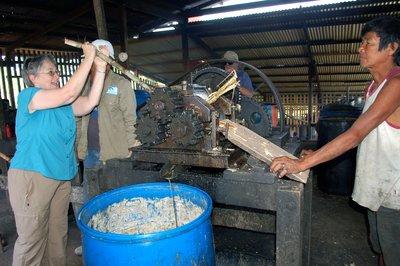 Rum Factory II