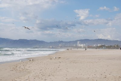 Beach between Venice and Santa Monica