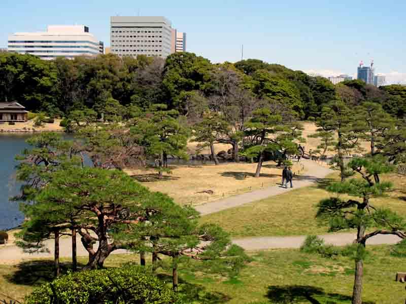 Tokyo Hama Rikyu Gardens