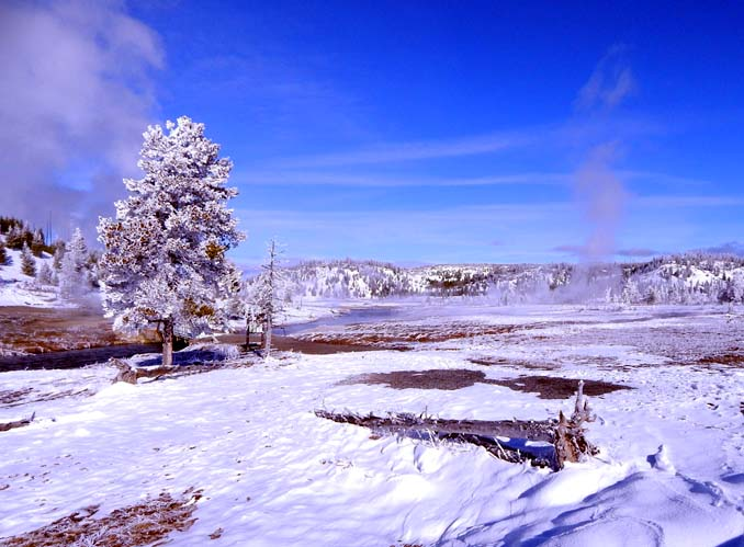 Winter in Yellowstone NP