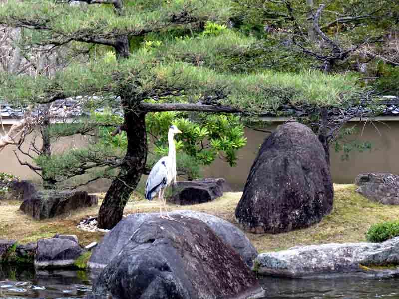 Kokoen Gardens