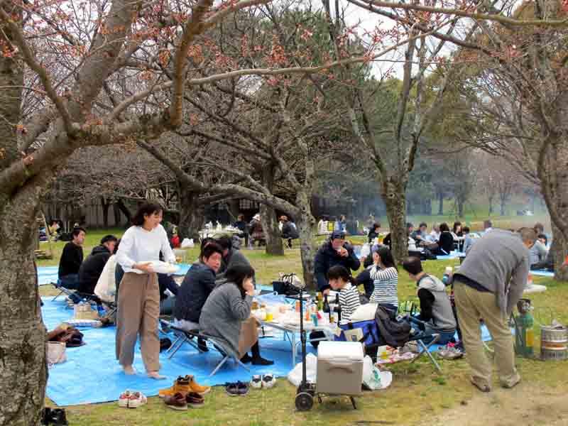 Fukuoka Maizaru Park