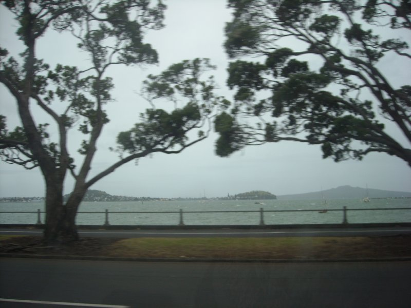 Looking out over Tamiki Drive before the cyclone comes in