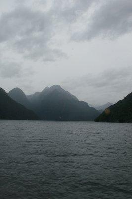 NZ_019.jpg