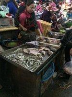 Cambodia_013.jpg