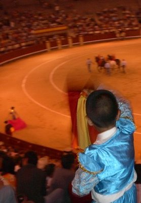 Young matador at bullfight