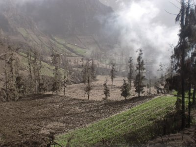 landscape covered by Bromo's ash