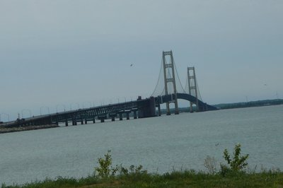 _The_Bridge_.jpg