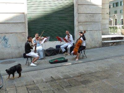 great string quartet
